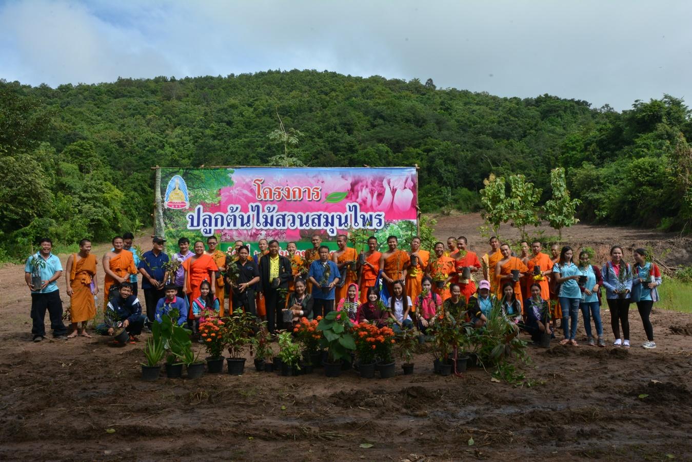 โครงการปลูกต้นไม้สวนสมุนไพร