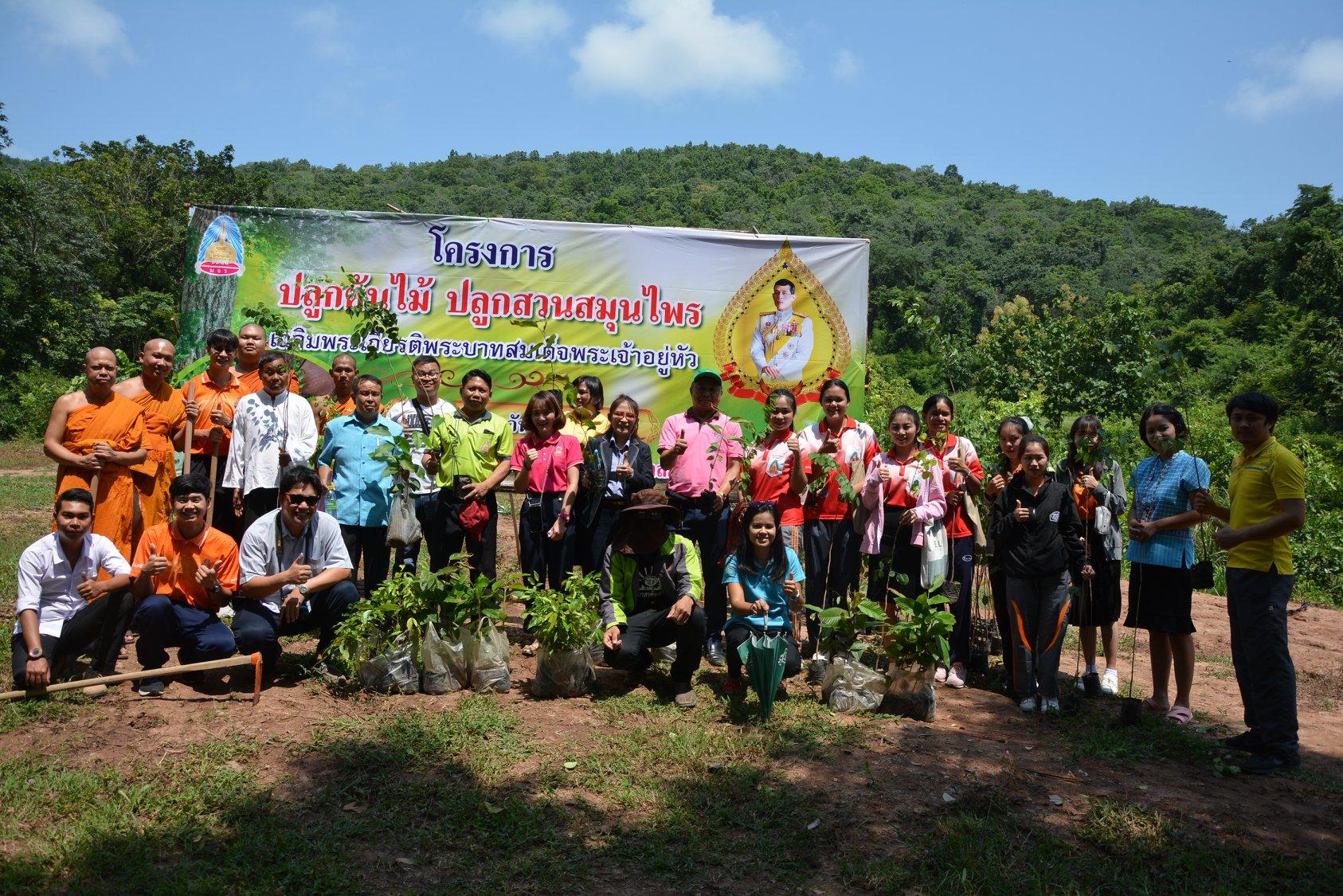โครงการปลูกต้นไม้ ปลูกสวนสมุนไพร